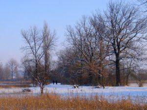 winter-schoen